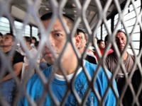 Illegal alien deportations