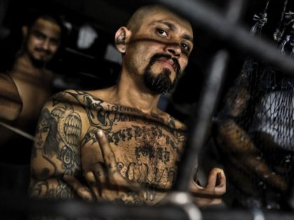 Promises Made, Promises Kept: Trump Administration Arrests More than 600 MS-13 Gang Members Since 2017