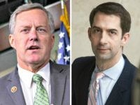 Mark Meadows, Tom Cotton