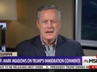 GOP Rep Meadows: 'I Don't See the President as a Racist at All'
