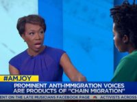 MSNBC's Joy Reid: Tucker Carlson Putting Forward 'a Pretty Blatantly White Nationalist View' on Immigration