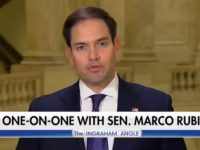Rubio: 'I Believe We Do Have to Build a Wall'