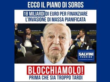 Salvini 3