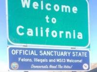 Sanctuary state sign (alternative_news_med / Instagram / Cropped)