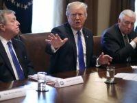 Trump Durbin Hoyer DACA 1 (Chip Somodevilla / Getty)