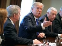 Trump Durbin Hoyer DACA 6 (Chip Somodevilla / Getty)