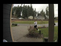 A suspected package thief in Washington state had some bad karma coming her way after a surveillance video appeared to show her attempting to steal a package from someone's front porch.