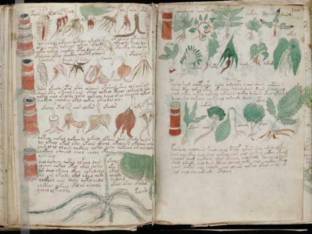 A page from the mysterious 600-year-old Voynich Manucript