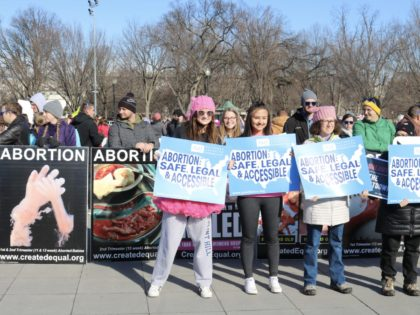 "Women's March participants held pro-abortion signs to block images of aborted babies. One pro-abortion sign-holder was also holding a sign about ""dreamers"" and the ""shutdown."" (Credit: Michelle Moons/Breitbart News)"