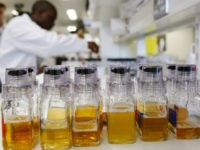 Urine samples are seen in the foreground as a laboratory technician prepares samples of urine for doping tests during a media open day, ahead of the Vancouver Winter Olympics, at the King's College London Drug Control Centre, London, Friday Feb. 5, 2010. The drug control centre is the UK's only …