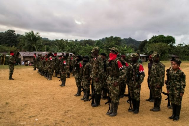 Colombia to seek new ceasefire with ELN guerrilla group