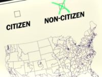 Census Citizen, Non-Citizen Graphic