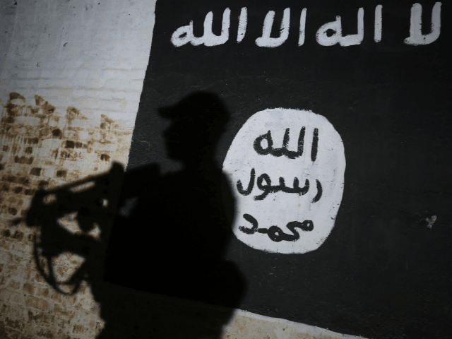 TOPSHOT - A member of the Iraqi forces walks past a mural bearing the logo of the Islamic State (IS) group in a tunnel that was reportedly used as a training centre by the jihadists, on March 1, 2017, in the village of Albu Sayf, on the southern outskirts of …