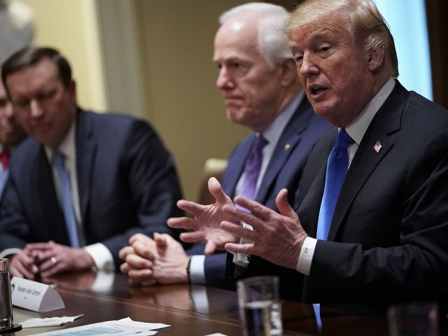 US President Donald Trump speaks during a meeting with bipartisan members of Congress on school and community safety in the Cabinet Room of the White House on February 28, 2018 in Washington, DC. / AFP PHOTO / Mandel NGAN (Photo credit should read MANDEL NGAN/AFP/Getty Images)