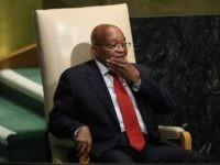 Jacob Zuma (Drew Angerer / Getty)