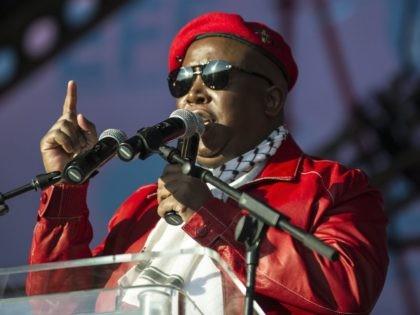 Julius Malema (Mujahid Safodien / AFP / Getty)