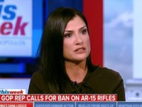 NRA's Loesch on FL Shooting: Blame Broward County Sheriff's 'Abdication of Duty,' Not Gun Owners