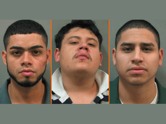 MS-13 Pimp Ordered Baseball Bat Beating of Underage 'Prostitute,' Say Police