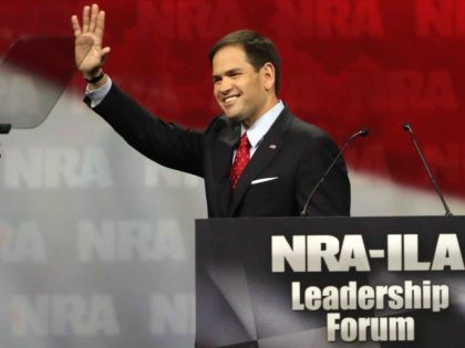 Marco Rubio NRA (John Gress / Getty)