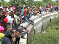 Migrants ride La Bestia