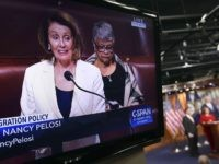 Nancy Pelosi filibuster (Susan Walsh / Associated Press)