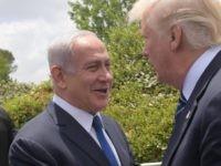 Netanyahu Trump (Amos Ben Gershom/ GPO / Getty)