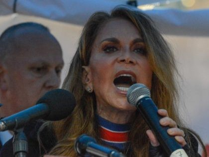 Pam Geller (Stephanie Keith / Getty)