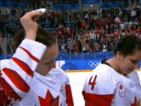 Screenshot Hockey Player