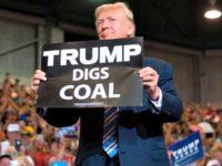 Infrastructure,Trump Digs Coal