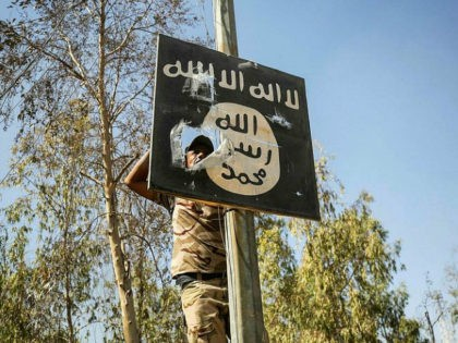 A member of Hashed Al-Shaabi (Popular Mobilization units) removes a sign on a lamp post bearing the logo of the Islamic State (IS) group as Iraqi forces advance inside the town of Tal Afar, west of Mosul, after the Iraqi government announced the launch of the operation to retake it …