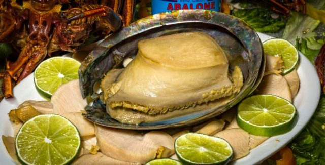 Abalone is prized in many Chinese cuisines causing rampant illegal poaching around the world