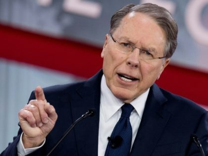 The National Rifle Association's (NRA) Executive Vice President and CEO Wayne LaPierre accused Democrats of seeking to roll back the right to bear arms enshrined in the US Constitution