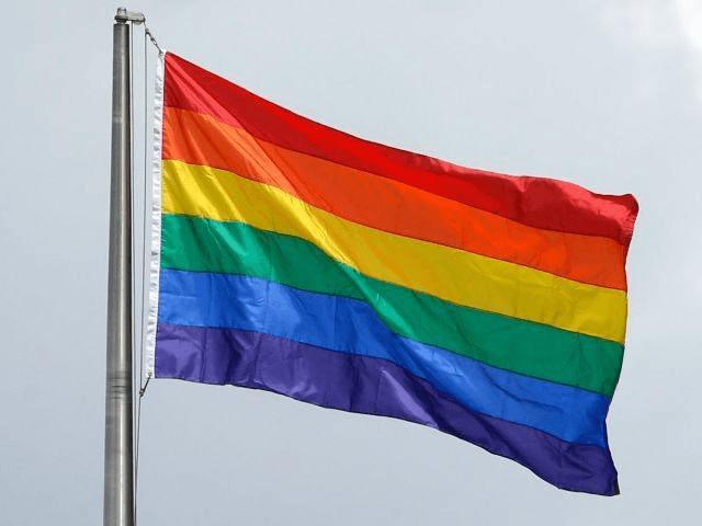 AP Ted S. Rainbow Flag