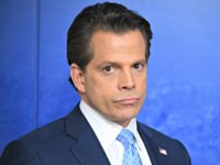 Scaramucci: Trump's Own Staff 'Absolutely Hates the Guy's Guts'