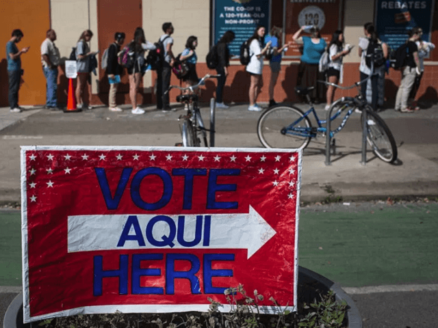 Austin Texas voters for primary - AP Photo