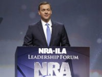 Chris Cox Tells Phil Bredesen to 'Stop Lying,' His NRA Rating Is a D Not an A