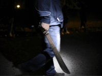 Tunisian Migrant Arrested After Attacking German Bystanders with Machete