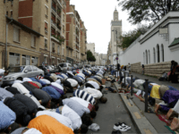 French Study: Average Jihadist is Young Under-educated, Petty Criminal Born in Migrant-Heavy Suburbs