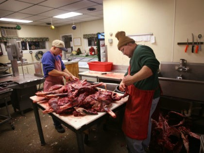 Ralph Roloff (L) and Kevin Metzger trims meat from deer that have been donated to the Help Us Stop Hunger (HUSH) program at the State Center Locker December 11, 2007 in State Center, Iowa. The HUSH program encourages hunters to donate deer to feed needy individuals through soup kitchens and …