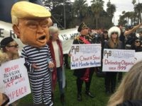 Anti-Trump Protest in Beverly Hills (Joel Pollak / Breitbart News)