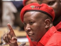 Julius Malema (Gianluigi Guercia / AFP / Getty)