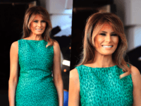 Melania in Green collage