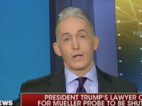 Trey Gowdy on Trump Lawyer Calling for Mueller Probe to End: If Trump Is Innocent, 'Act Like It'