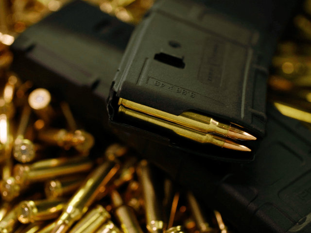 A magazine with newly manufactured 5.56mm cartridges is seen at Stone Hart manufacturing, Co. April 9, 2009 in Miami, Florida. Ammunition suppliers nationwide are reporting a shortage due in part to a sharp rise in gun sales after the election of President Obama that are said to be fueled by …