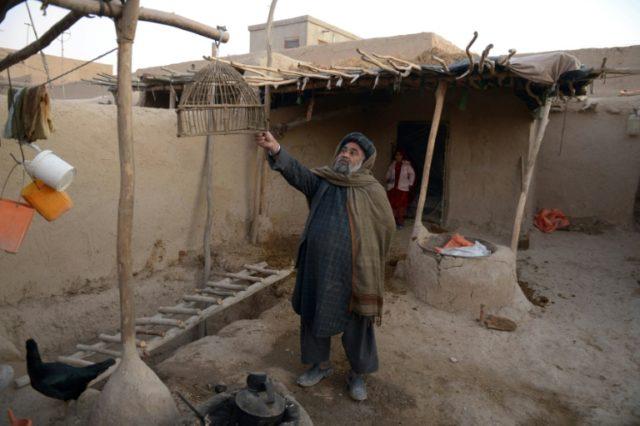 Afghanistan's forgotten gypsies seek legal recognition