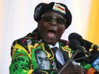 Ex-Zimbabwe leader Mugabe calls ouster 'coup d'etat'