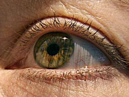 """The research team used human embryonic stem cells to grow retinal cells on a thin plastic scaffold and then transplanted the """"engineered tissue"""" into two sufferers of age-related macular degeneration who can now read again, albeit slowly"""
