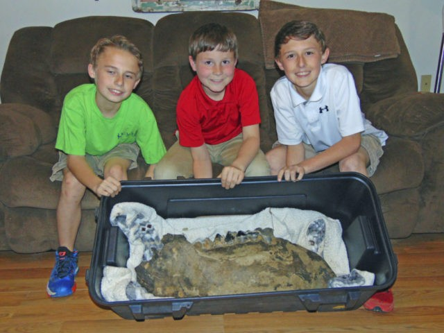 3 boys in Mississippi find part of mastodon jawbone