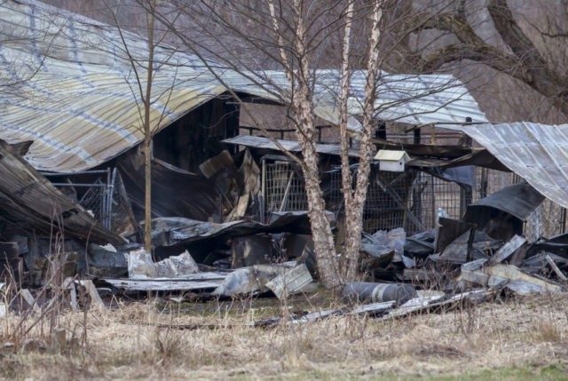About 30 dogs believed dead in Michigan kennel fire