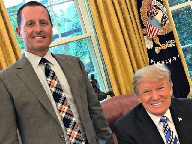 Image result for grenell and trump